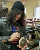 Slash france turtle solo 2017 1113_nashville 2017 11 13 nashville zoo